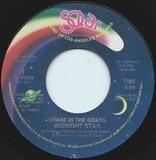 Snake In The Grass - Midnight Star