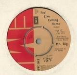 Feel Like Calling Home - Mr Big