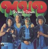 Shake It Down - Mud