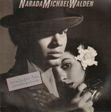 Looking at You, Looking at Me - Narada Michael Walden