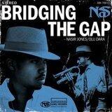 Bridging The Gap - Nas