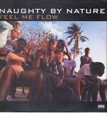 Feel Me Flow / Hang Out And Hustle - Naughty By Nature