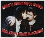 What A Wonderful World - Nick Cave & Shane McGowan