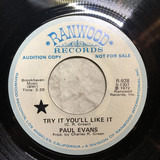 Try It You'll Like It / We Liked It - Paul Evans