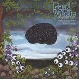 Paul White
