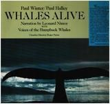 Whales Alive - Paul Winter / Paul Halley