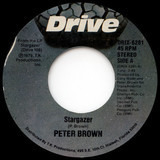 Stargazer / Penguin - Peter Brown