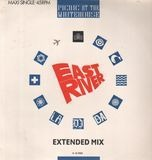 East River (Extended Mix) - Picnic At The Whitehouse