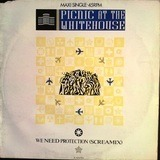 We Need Protection (Screamix) - Picnic At The Whitehouse