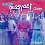 Hey Joe / Love In September - Pussycat