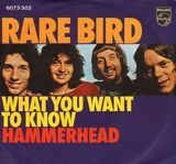 What You Want To Know / Hammerhead - Rare Bird
