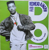 Do The Right Thing (The Happiness Remix) - Redhead Kingpin And The FBI