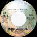 Another Goodbye Song - Rex Allen Jr.