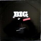 Big (Fighting With The Synthesizer Of Doom) - Richard Bartz