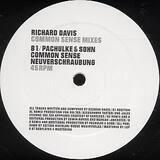 Common sense (Remixes) - Richard Davis