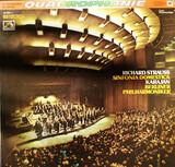 Sinfonia Domestica Op.53 - Richard Strauss