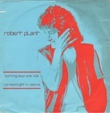 Burning Down One Side - Robert Plant