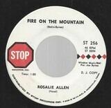 Fire On The Mountain - Rosalie Allen