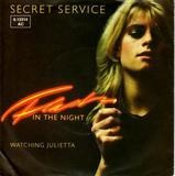 Flash in the night - Secret Service