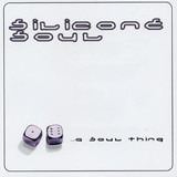 ...A Soul Thing - Silicone Soul