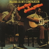 Blues Is My Companion - Sonny Terry & Brownie McGhee