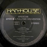 Spice is a Fulltime Occupation - Spicelab