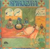 Old Boot Wine - Spirogyra