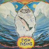 Fish Rising - Steve Hillage