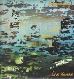 Live Herald - Steve Hillage