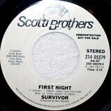 First Night - Survivor