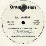 Everybody Is Somebody / Deed I Do - Taj Mahal