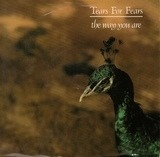 The Way You Are - Tears For Fears