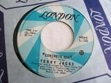 Concrete Sea / She Even Took The Cat - Terry Jacks