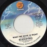 WHAT WE HAVE IS RIGHT - The Blackbyrds