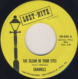 The Gleam In Your Eyes - The Channels