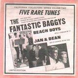 The Fantastic Baggys