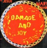Damage And Joy - The Jesus and Mary Chain