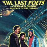 Delights of the Garden - The Last Poets With Bernard Purdie