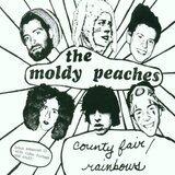 County Fair/Rainbows - the Moldy Peaches