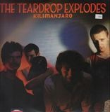 The Teardrop Explodes