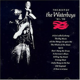 The Best Of The Waterboys '81 - '90 - The Waterboys