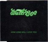 How Long Will I Love You - The Waterboys
