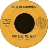 You Tell Me Why - The Beau Brummels