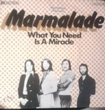 What You Need Is A Miracle - The Marmalade