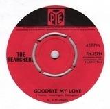 Goodbye My Love - The Searchers