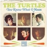 You Know What I Mean / Rugs Of Woods & Flowers - The Turtles