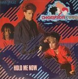 Hold Me Now - Thompson Twins