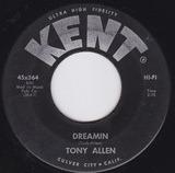 Dreamin - Tony Allen