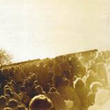 Gärdet 12.6.1970 - Träd, Gräs Och Stenar