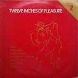 Twelve Inches Of Pleasure (Volume 2) - Various